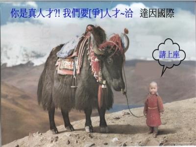 人才!請上馬 !