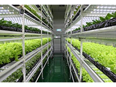 庭茂農業生技股份有限公司相關照片2