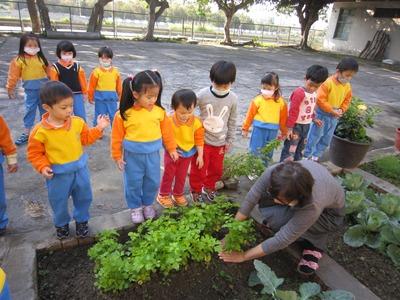 財團法人天主教新竹教區附設貞德幼稚園相關照片2