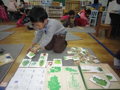 財團法人天主教新竹教區附設貞德幼稚園相關照片4