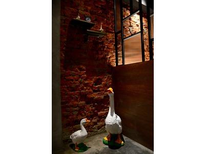 阿城鵝肉相關照片8