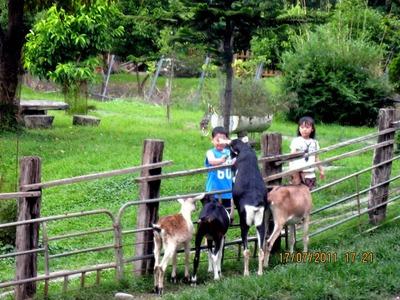 宜農牧場相關照片3