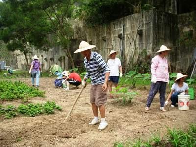 工作訓練-農藝