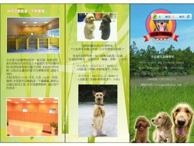 全宏愛犬訓練學校相關照片2
