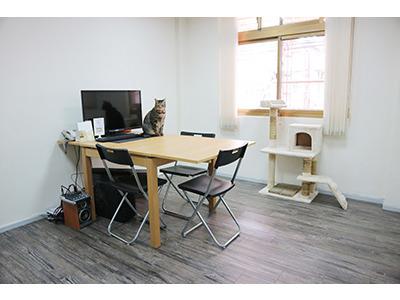 辦公室一角-會議室