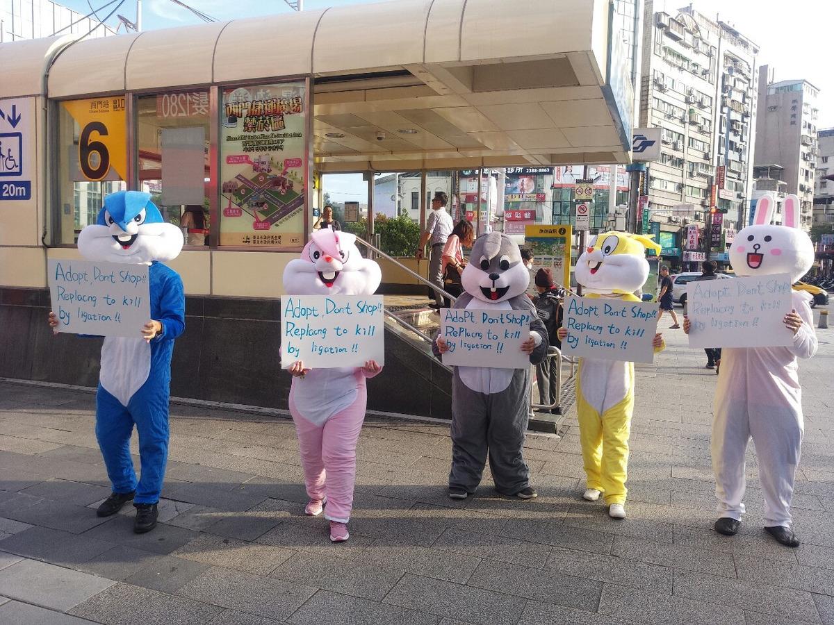 社團法人台灣聯合動物公園協會相關照片3