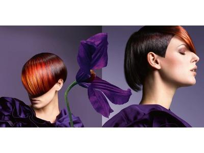 Evolve HAIR(進化創意美髮)相關照片4