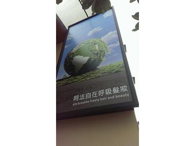 阿法綠色髮妝國際有限公司相關照片5