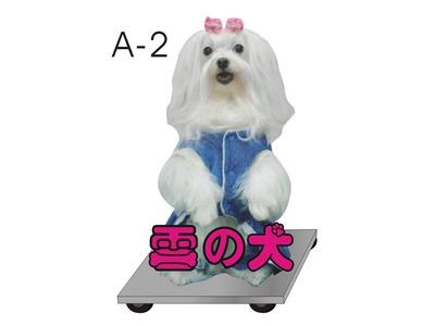 雪之犬專業寵物美容店相關照片1