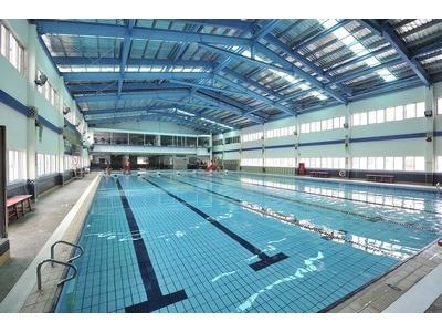 自由游泳池相關照片1