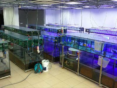 公司內部循環水系統照片