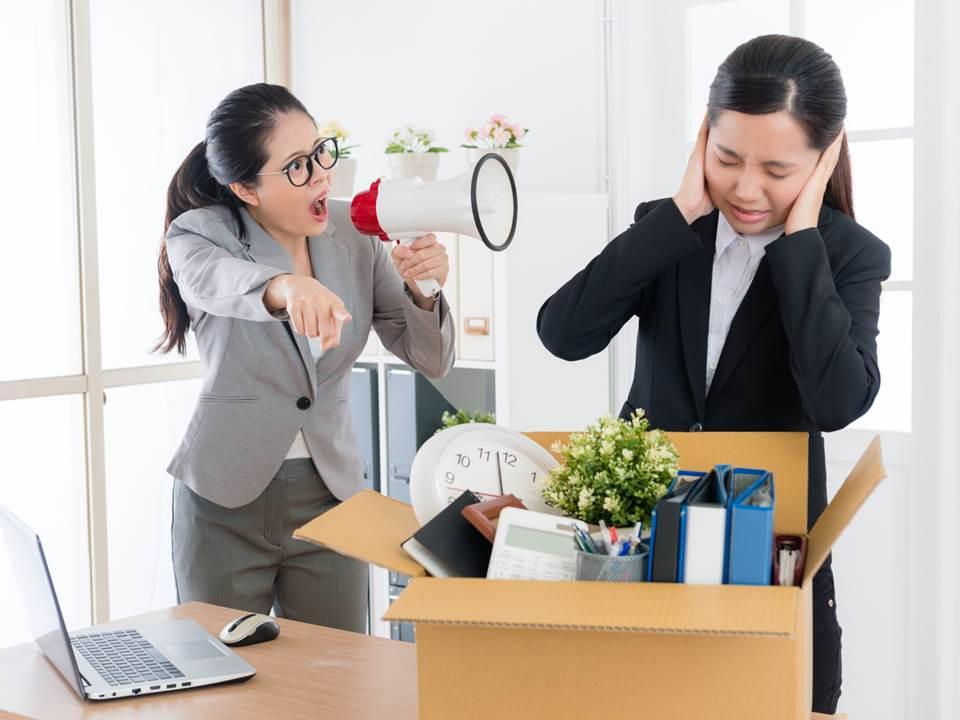 第一份工作最好別待太久?專家曝職場內幕是這樣看菜鳥